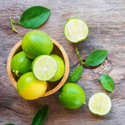 Lime Cold Pressed Essential Oil, 10ml