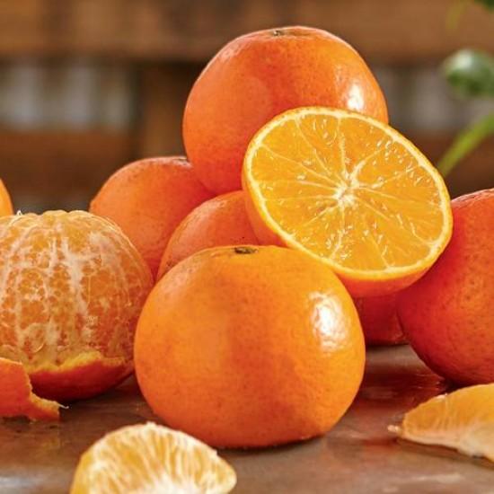 Orange 5 Fold Essential Oil, 10ml