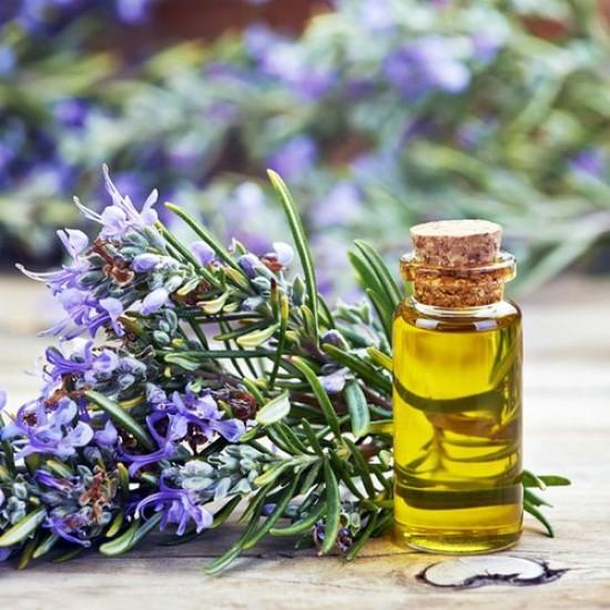 Rosemary Essential Oil, 10ml