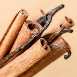 Cinnamon Vanilla Fragrance Oil