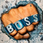 Boss Type aroomiõli, 30g