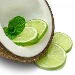 Coconut Lime Verbena Type aroomiõli, 30g