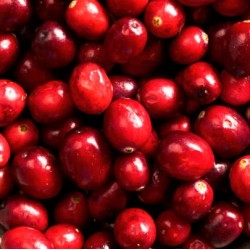 Cranberry Relish Fragrance Oil, 30ml