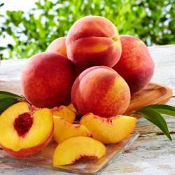 Fresh Peach Fragrance Oil, 30g