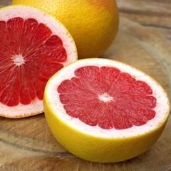 Grapefruit Ruby Red Fragrance Oil, 30g