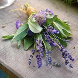 Lavender Sage Fragrance Oil