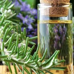 Rosemary Fragrance Oil