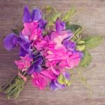 Lillhernes ja vanilje aroomiõli, 30g