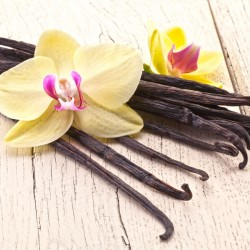 Vanilla Bean Type Fragrance Oil, 30ml