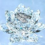 White Diamonds Type aroomiõli, 30g